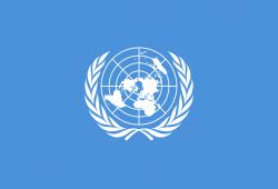 """مفوض الأمم المتحدة: سوريا أصبحت """"غرفة تعذيب"""""""
