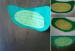 """بالصور..طالبات دمنهور يواصلن حملة """"قصاقيص ضد الانقلاب"""""""