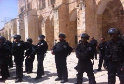 الصهاينة يقتحمون المسجد الأقصى.. وتواصل الاعتقالات