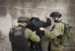 كلاب الصهاينة تنهش جسد شاب فلسطيني وقوات الاحتلال تعتقله