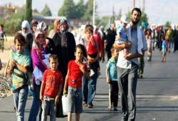 13.6 مليون نازح بسبب النزاعات في العراق وسوريا