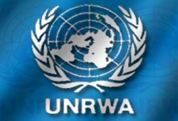 الأونروا: العالم فشل في  حماية المدنيين بغزة