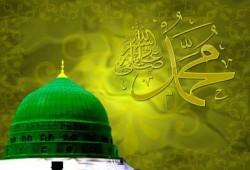 السنة النبوية في حياة الأخ المسلم