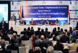 انطلاق مجلس الأعمال المصري- الهندي