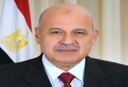 """""""إخوان أون لاين"""" ينشر حوار نائب الرئيس مع التليفزيون المصري"""
