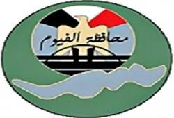 الأحد القادم.. قصر ثقافة الفيوم يحتفل بانتصارات أكتوبر