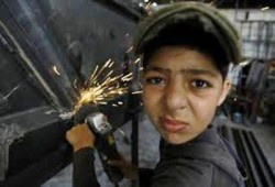 البدء في دراسة مشروع مكافحة عمالة الأطفال لتنفيذه بالمنيا