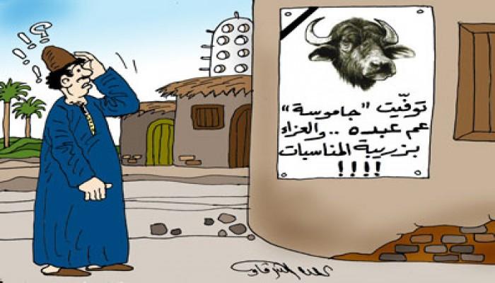عبد القادر أحمد عبد القادر يكتب: طرائف مصرية (1)