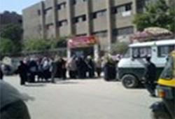 إقبال ملحوظ بلجان الشورى في شبرا الخيمة