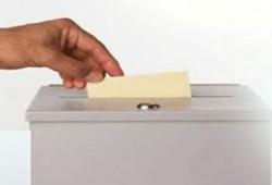 مولد الانتخابات