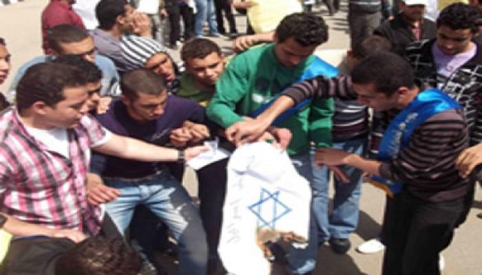 جامعة المنصورة تنتفض نصرةً لغزة