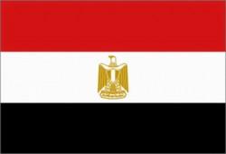 أزمة المثقف المصري
