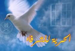 جنح أسوان ترفض استئناف معتقلي الإخوان!