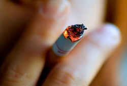 حكم تزويج المدخن وبائع الدخان