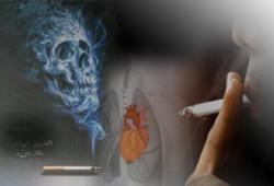برنامج مكافحة التدخين في النشاط الصيفي
