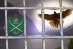 قرار بإخلاء سبيل 5 من إخوان أسيوط