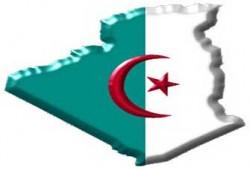إلى أين تسير الجزائر؟