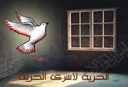 اللجنة القومية للدفاع عن سجناء الرأي تنتقد اعتقالات الإخوان