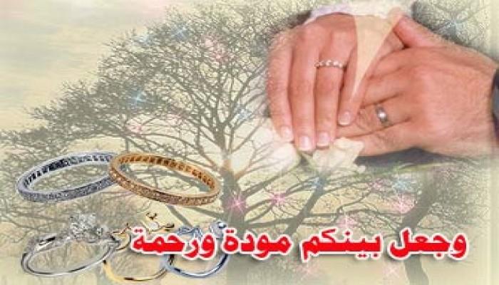المرشد العام يشارك في عقد زواج نجل عبد المنعم أبو الفتوح