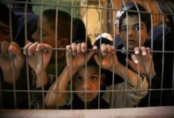 الإخوان المسلمون يدعون إلى دعم الشعب الفلسطيني لتجاوز محنته