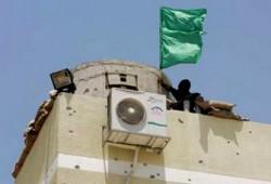 أحداث غزة.. الضعف العربي والإملاءات الأمريكية