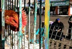 دور الدعاة والخطباء في أزمة أنفلونزا الطيور