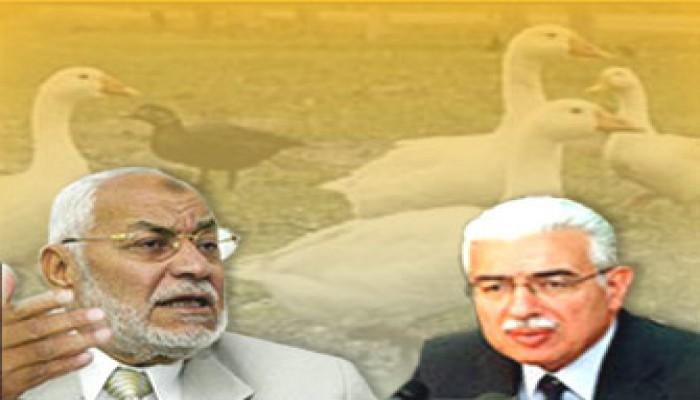عاكف: الحكومة المصرية خرَّبت صناعة الدواجن