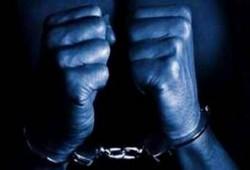 الإفراج عن 11 من الإخوان المعتقلين خلال الانتخابات