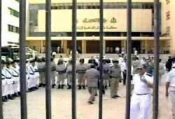التعذيب في مصر.. جريمة منظمة!