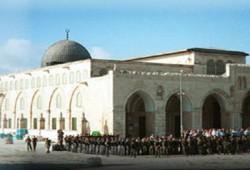قوافل الشهداء .. وحدها .. تحرر فلسطين