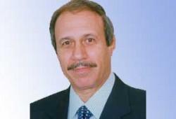 مصر السياسة الداخلية