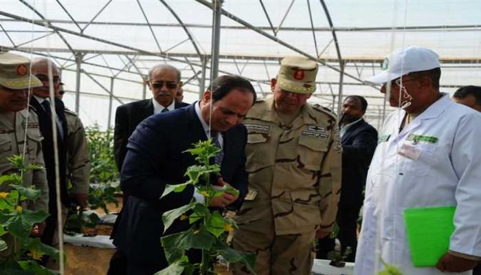 بقرارات من السيسي.. عسكر الانقلاب يبتلع أراضي الشعب