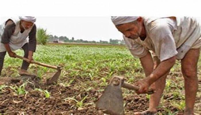 """تجاهل """"سد النهضة"""".. الانقلاب يجامل إثيوبيا على حساب الزراعة المصرية"""