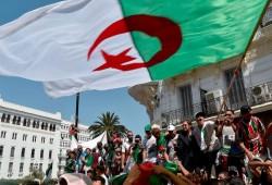 """جزائريون يسخرون من خطاب قائد الجيش: """"قل لنا اسم الرئيس"""""""