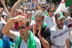 الجزائريون يتحدون قائد الجيش ويواصلون مظاهراتهم الحاشدة
