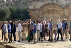 صهاينة يقتحمون الأقصى مجددًا.. وحماس: الاحتلال يحاول ترميم صورته المشوهة