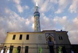 ردود فعل غاضبة بسبب مداهمة الشرطة الهولندية مسجدًا بالكلاب