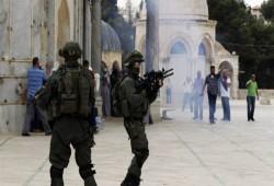 منظمة حقوقية أوروبية: 376 انتهاكا صهيونيا ضد القدس خلال سبتمبر