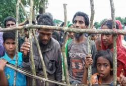 أسوشيتدبرس: عودة الروهينجيا إلى ميانمار مستحيلة