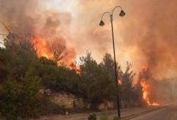 سلسلة من الحرائق الكبيرة تجتاح لبنان