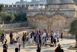 754 مغتصبًا يقتحمون المسجد الأقصى.. وهيئات إسلامية تحذر