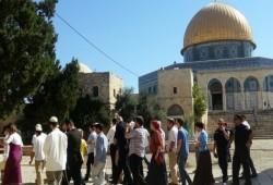 صهاينة يقتحمون الأقصى واعتقال 12 فلسطينيا واستمرار إضراب ثلاثة أسرى