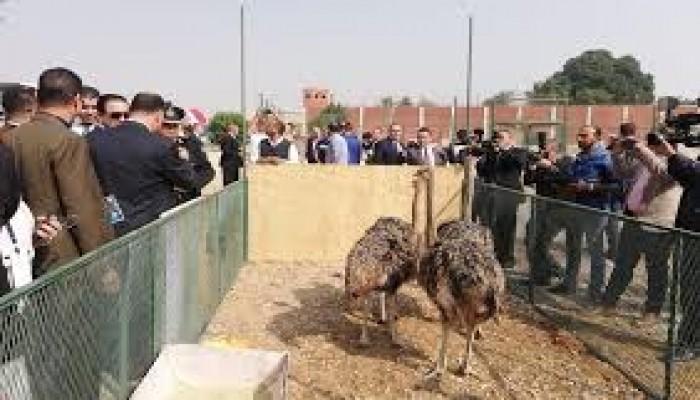 بعد حلقة نارية من عبدالله الشريف.. عقاب جماعي لسجناء طرة
