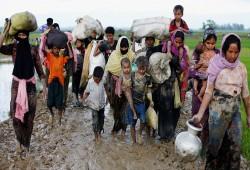 رئيس المجلس الأوروبي للروهنيجيا يدعو لمحاكمة قادة جيش ميانمار