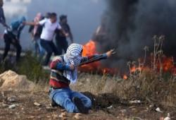 4 شهداء وأكثر من 25 مصابًا باعتداءات الصهاينة الأسبوع الماضي