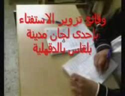 وقائع تزوير الاستفتاء في إحدى لجان بلقاس بالدقهلية