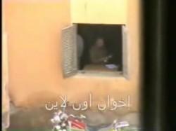 التزوير بمحافظة الفيوم