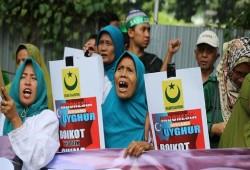 إندونيسيا تدعو الصين للتحلي بالشفافية في قضية مسلمي الإيجور