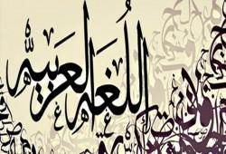 في اليوم العالمي للعربية.. (ض) لغة الحياة