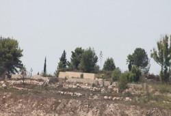 """اعتقال 12 فلسطينيا واقتحام مستوطنة """"حومش"""" المخلاة"""